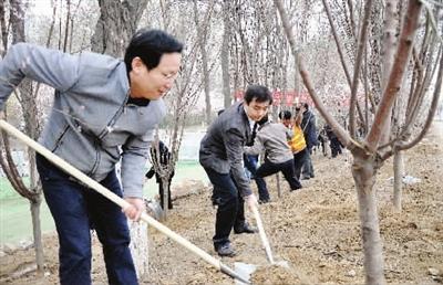 李鸿忠王东峰肖怀远臧献甫怀进鹏等参加植树日全民义务植树活动