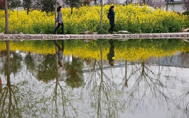 河南宝丰:春在塘边 人在画中