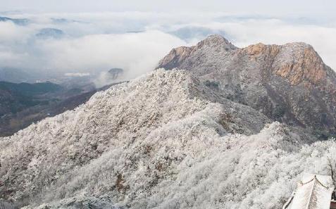 天津盘山现云海雾淞景观