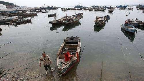 大连海域海洋伏季休渔时间提前一个月