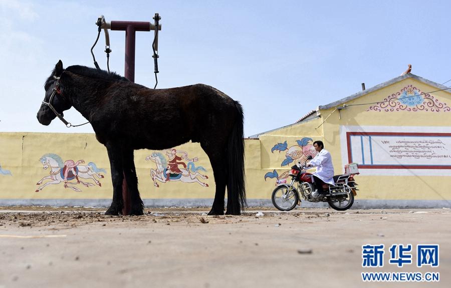 青海省进一步提高乡村医生补助