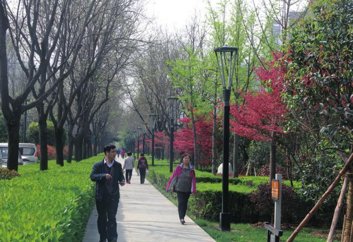 打造绿色之城花园之城让绿满四季 开启双自联动聚力5882实施三次创业——西安高新区 植树增绿助推环境大提升