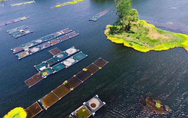 """航拍:平顶山白龟山水库 看得见风景的""""水缸"""""""