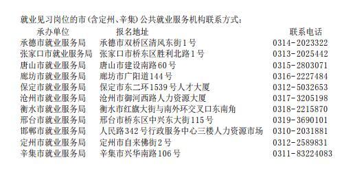 河北省公布20931个高校毕业生见习岗位