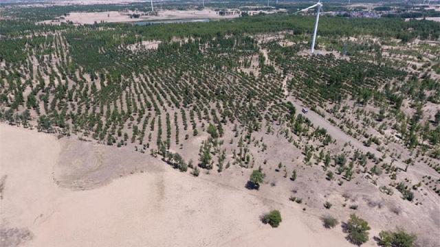 辽宁投资4亿元用于防沙治沙工作