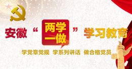 """安徽""""两学一做""""学习教育"""