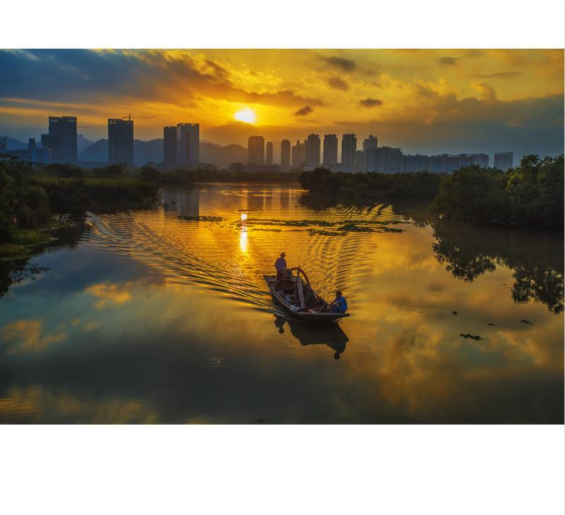九龙湖的早晨