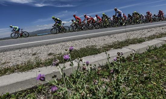 自行车——环青海湖国际公路自行车赛第四赛段赛况