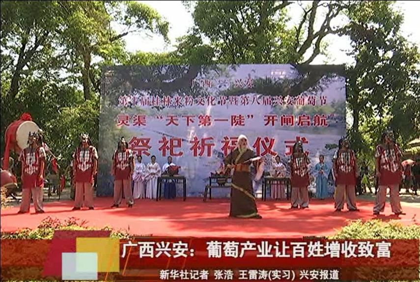 广西兴安:葡萄产业让百姓增收致富