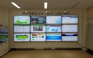 云南国家农村信息化示范省建设快速推进