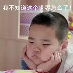 """从""""民咕咕""""到""""谢飞机"""",你的表情包进阶了吗?"""