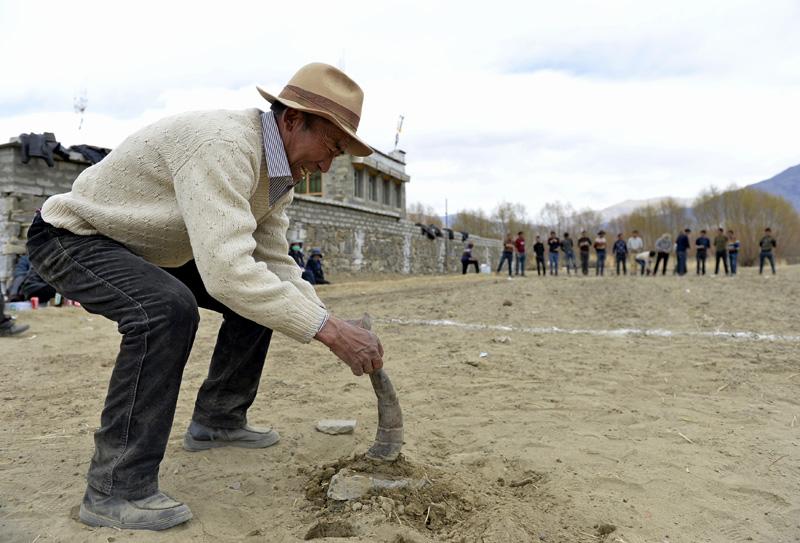 西藏:石击牛角闹新春