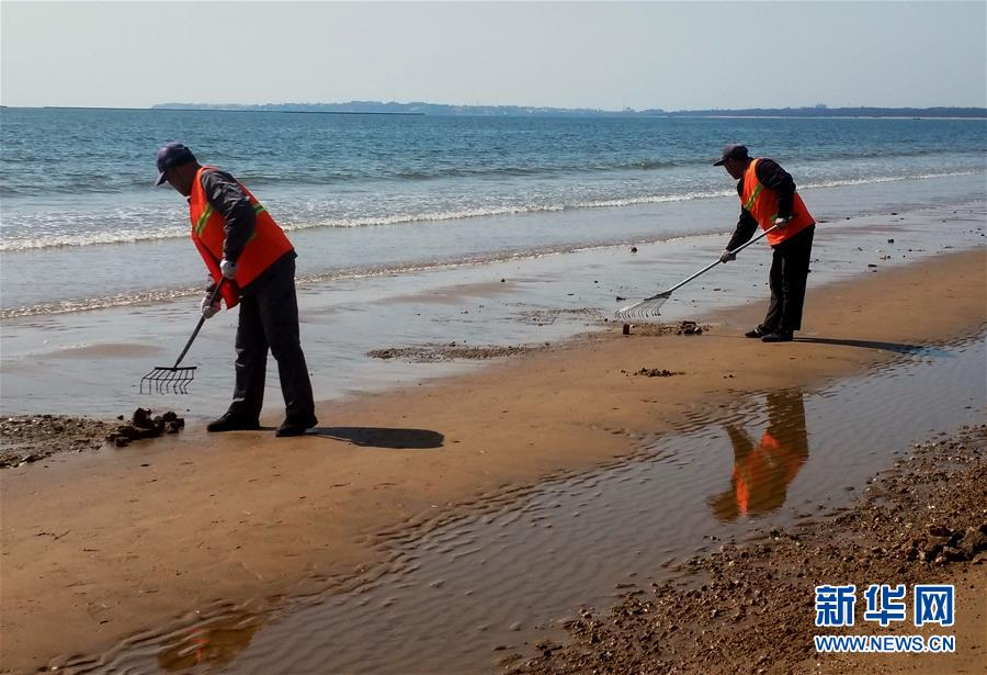 秦皇岛:海滩过滤 细沙迎宾