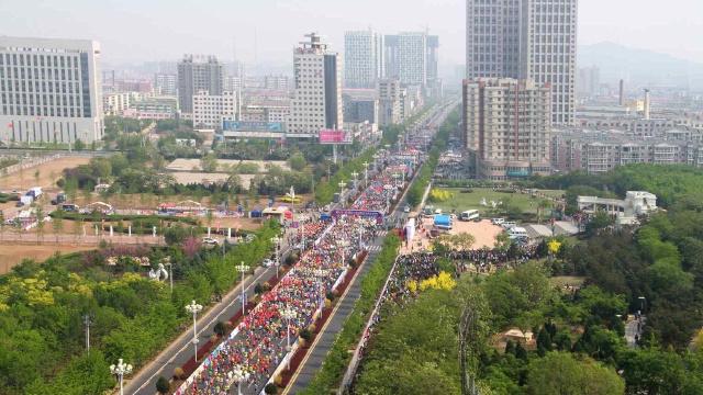 鲅鱼圈补植4000余棵景观树 点亮马拉松赛道