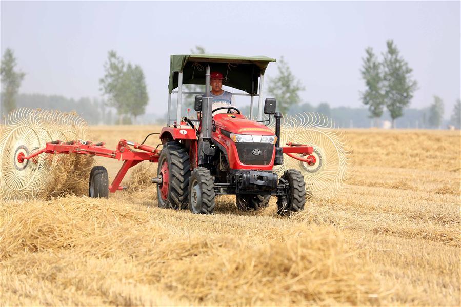 安徽淮北:麦秸回收 废物变金