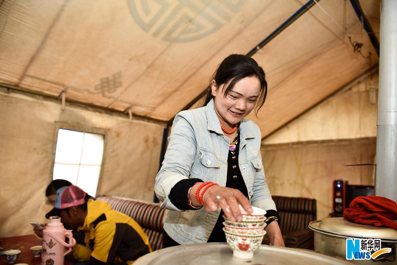 青藏铁路线上海拔近5000米的帐篷茶馆