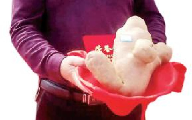 昆明寻甸一个大洋芋卖得3万元