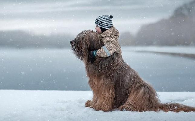 摄影师拍摄萌娃与大狗亲密互动温馨照