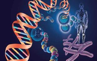 """SPARC新软件弥补三代基因测序技术""""硬伤"""""""