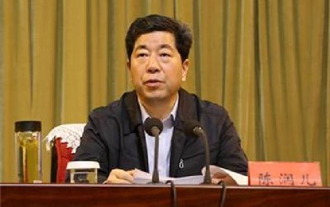 陈润儿:培育扶持创新引领性企业 加大支持力度