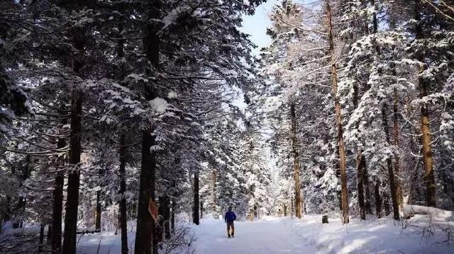 """湖北小伙在康平:""""我不怕冷,只怕错过冰湖马拉松!"""""""