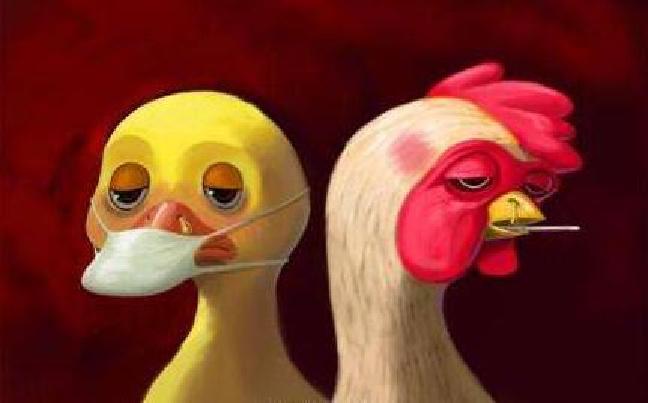 昆明市采取多项措施加强禽流感防控