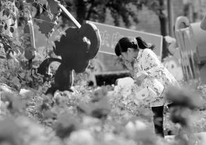 石家庄市旅游五年增收481.76亿元 省城居民越来越爱玩