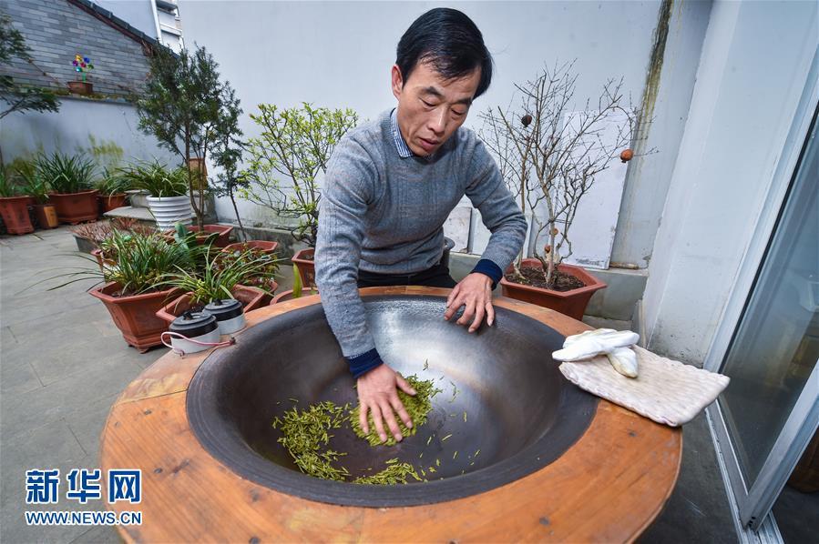 杭州西湖龙井首批春茶开采