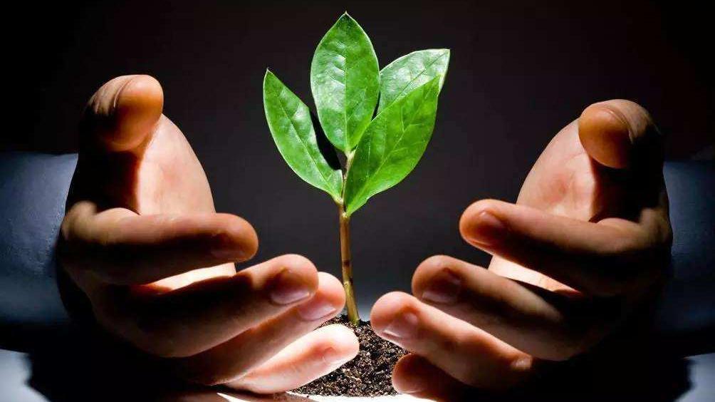 鞍山设种子基金支持初创期企业