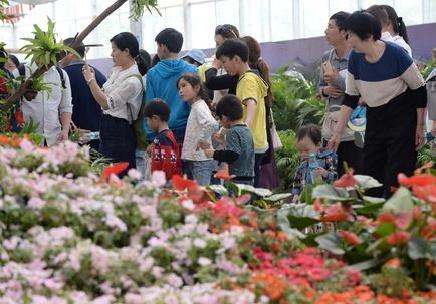 """欢乐""""五一:游客在南昌溪霞农业园游玩赏景"""