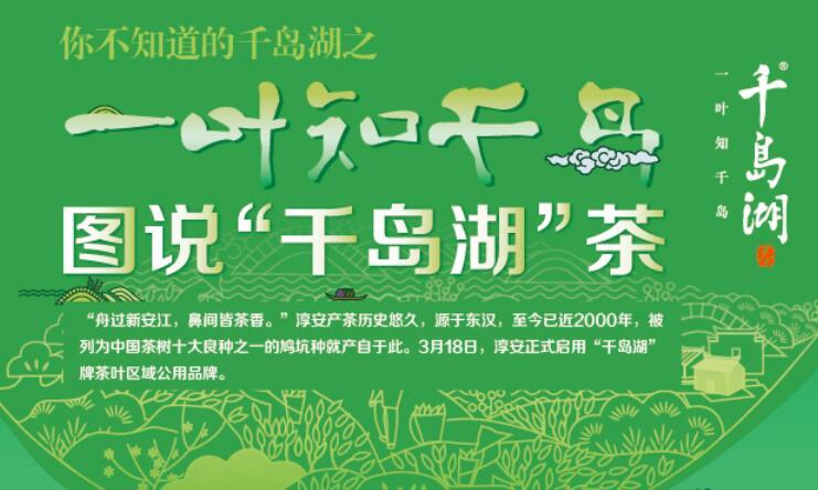 """【数据】一叶知千岛 图说""""千岛湖""""茶"""