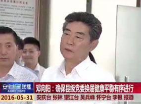 邓向阳:确保县级党委换届健康平稳有序进行