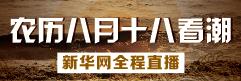 2016钱江潮