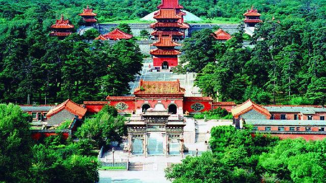 沈阳市林业局:当好沈阳生态建设主力军