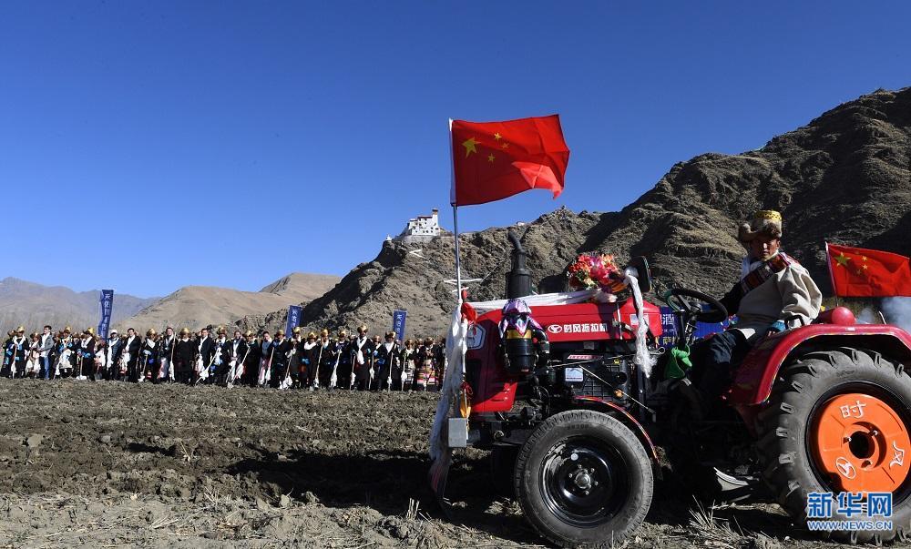 西藏春耕第一犁:古老土地孕育新希望