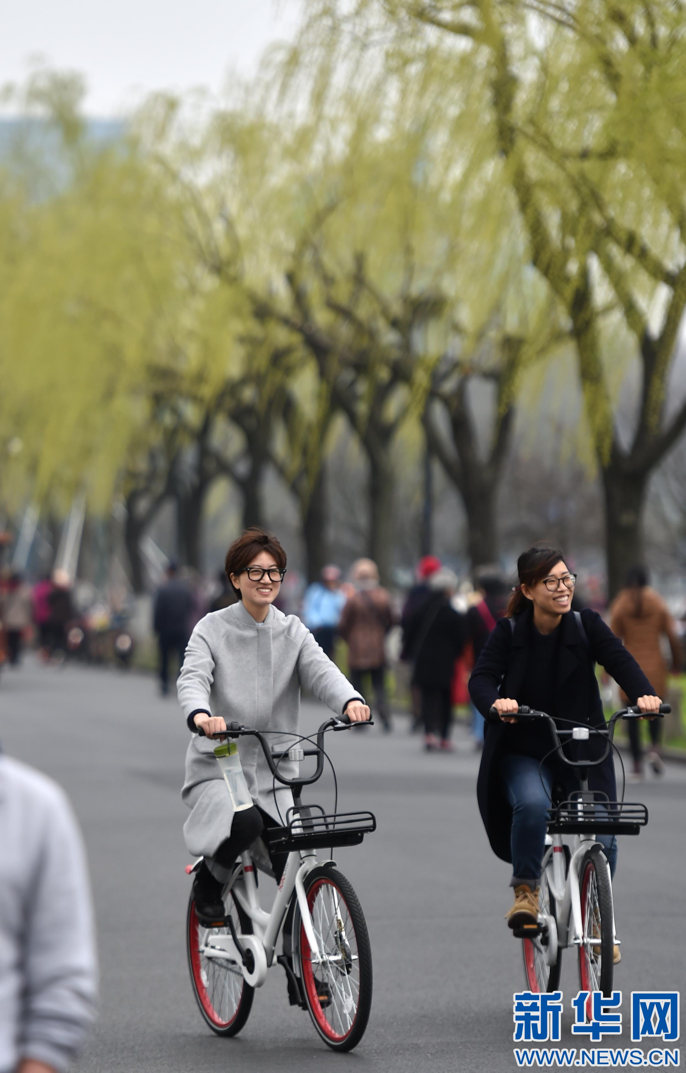 """杭州:西湖景区始现""""桃红柳绿""""美景"""