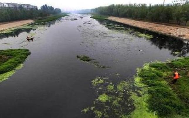 贾鲁河黑臭水体整治年底前达标
