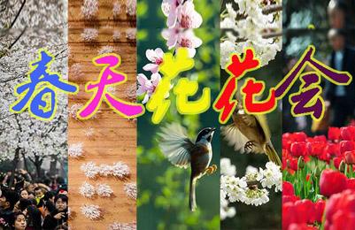 春天花花会