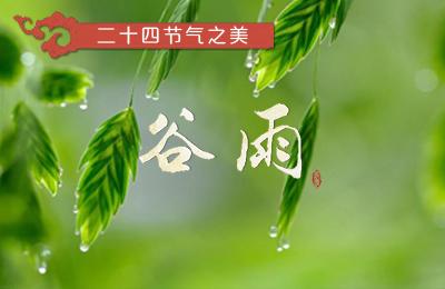 [H5]带你领略二十四节气之美:谷雨
