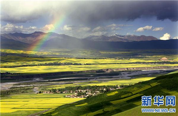"""中国旅游日:站在百里花海 把青海""""寄""""给世界 - 昆仑玉 - 昆仑玉博客---智者乐山 仁者乐水"""