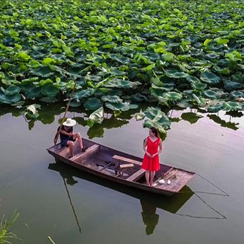 献给!最美的滁州