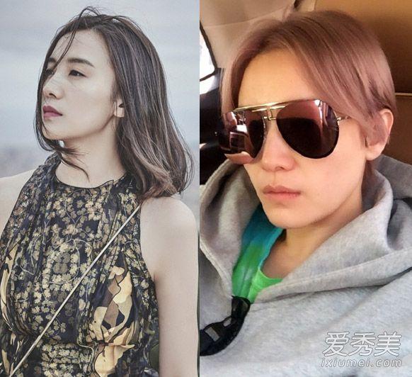 马思纯陈瑶焦俊艳宋佳 女星短发造型大pk