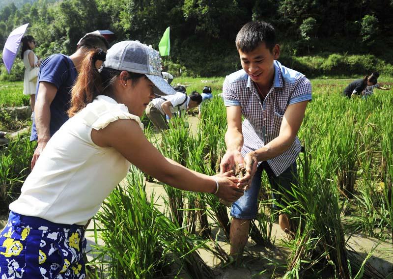 瑶乡生态文化旅游助农增收