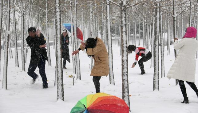 """郑州:大雪过后 市民""""撒欢""""享雪趣"""