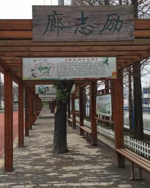 和县石杨镇中心小学
