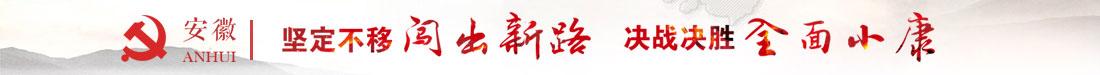 坚定不移闯出新路 决战决胜全面小康--安徽省第十次党代会