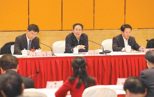 李锦斌参加六安黄山代表团审议