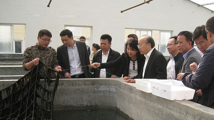 周国辉到浙江省海洋水产养殖研究所洞头基地调研