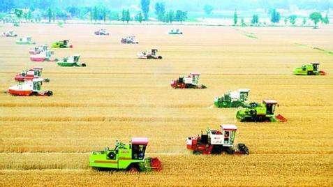 辽宁农业:做好加减法增加绿色高端产品供给