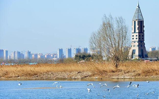 石家庄滹沱河生态区内将新增多个景点